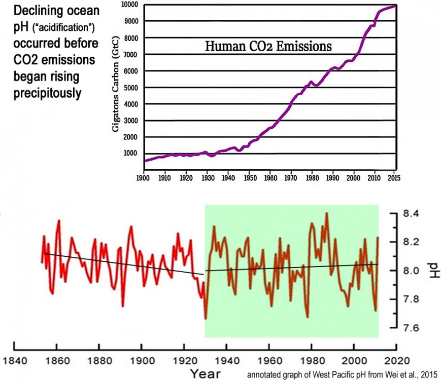 Declining-ocean-pH-acidification-occurred-before-CO2-emissions-began-rising-1 (1).jpg