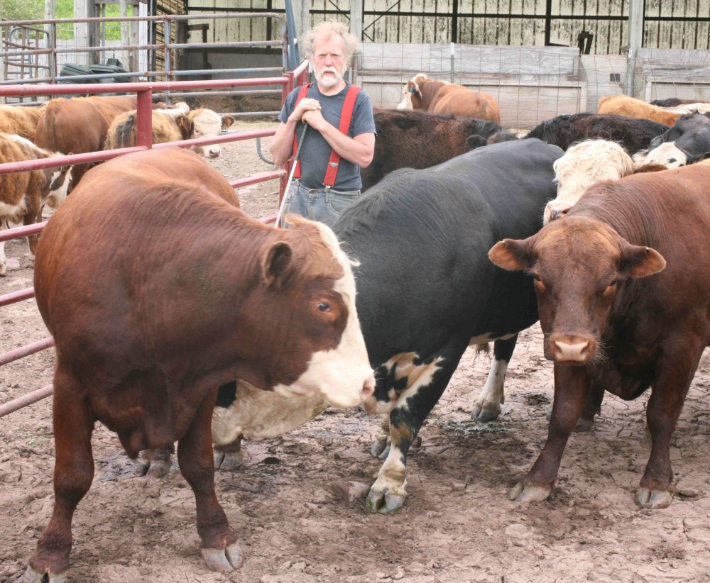 Runnig with the bulls III June 15 2017.jpg